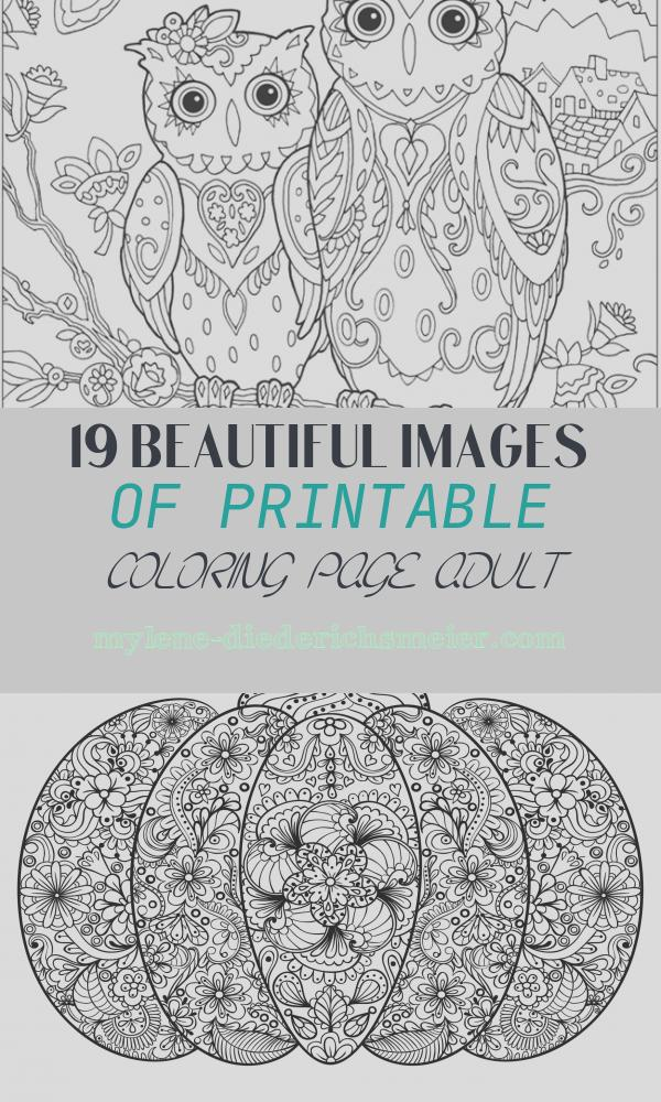 Printable Coloring Page Adult Elegant Printable Coloring Pages for Adults 15 Free Designs