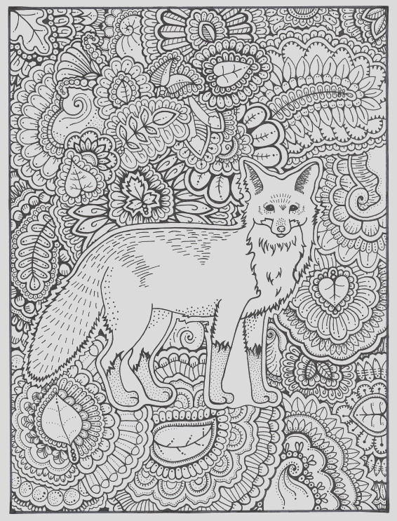 fox coloring page coloring book pages