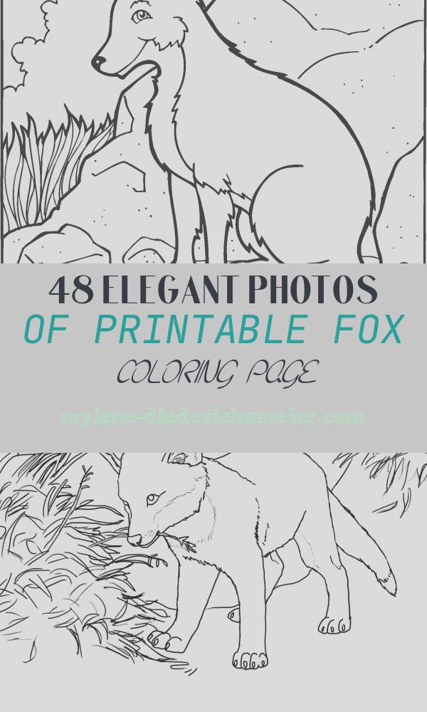Printable Fox Coloring Page Unique Free Printable Fox Coloring Pages for Kids