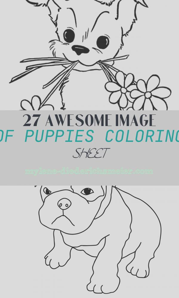 Puppies Coloring Sheet Beautiful Puppy Coloring Pages Best Coloring Pages for Kids