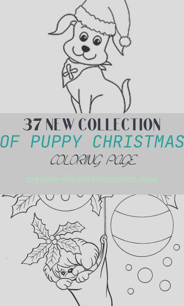 Puppy Christmas Coloring Page New top 30 Free Printable Puppy Coloring Pages Line