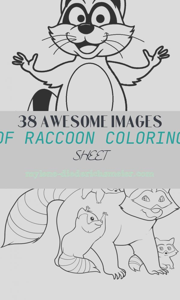 Raccoon Coloring Sheet Awesome Printable Raccoon Coloring Pages for Kids