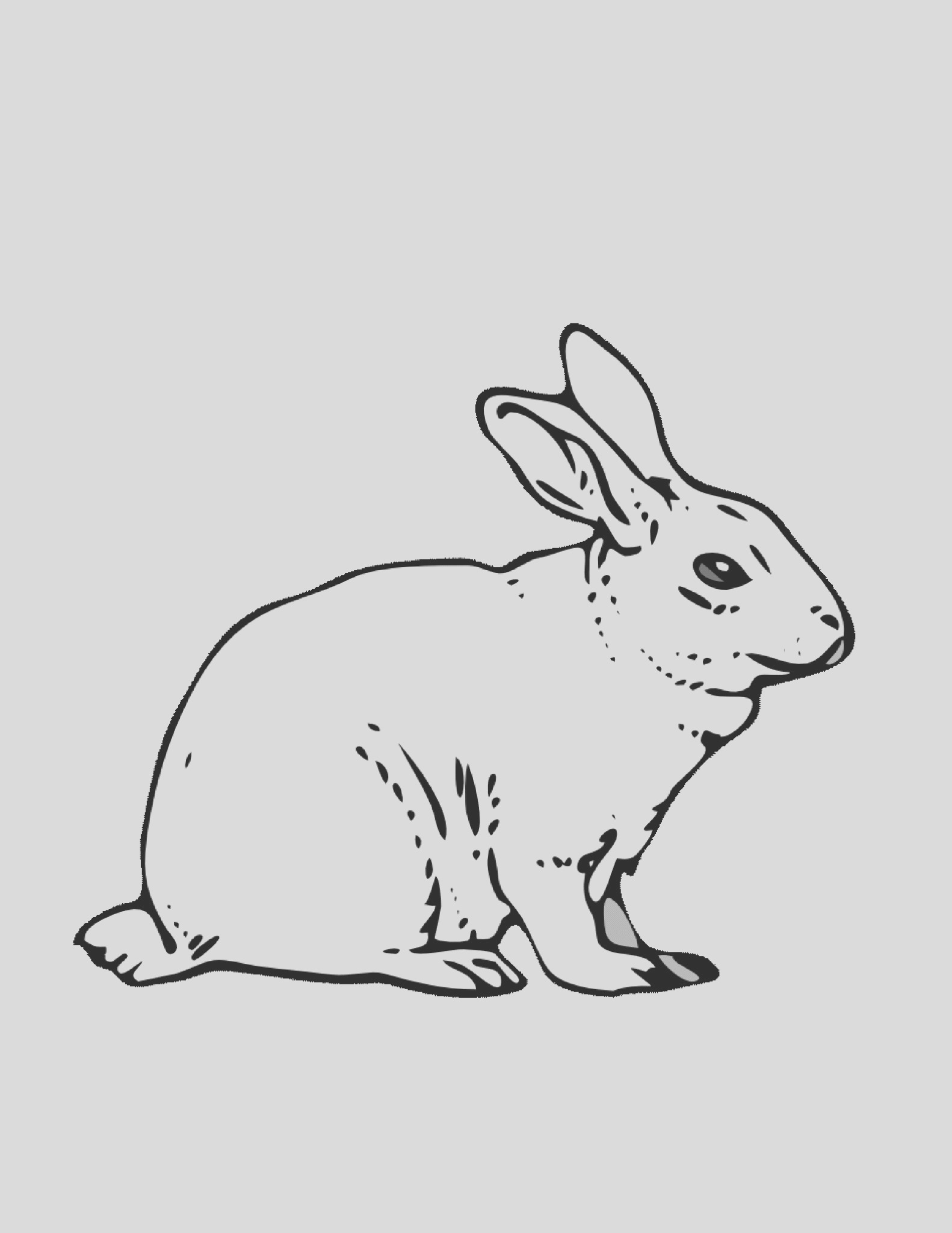 baby bunny coloring pages realistic sketch templates