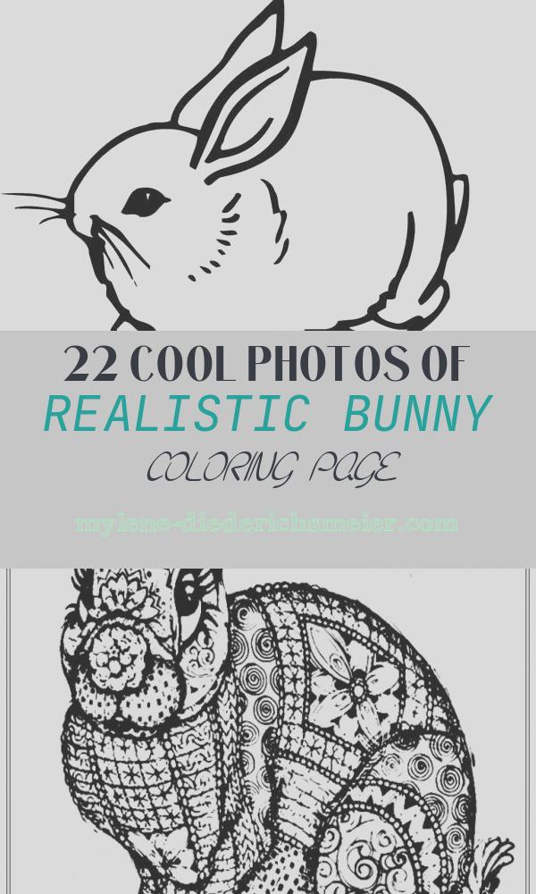Realistic Bunny Coloring Page Inspirational Realistic Image A Sweet Little Bunny Coloring Page