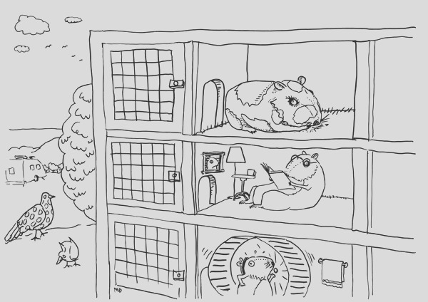 guinea pig by number sketch templates