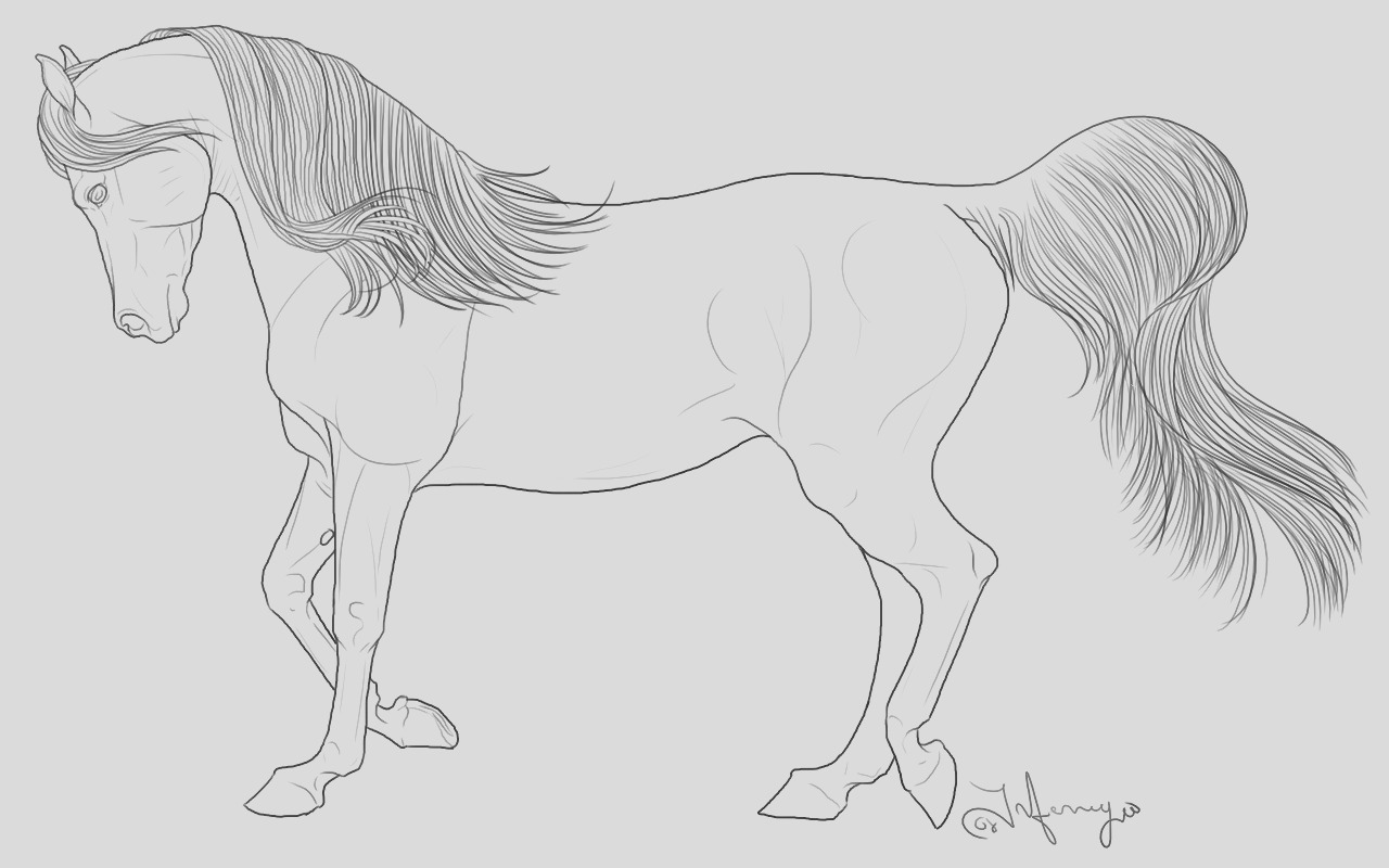 realistic horse coloring pages for adults sketch templates