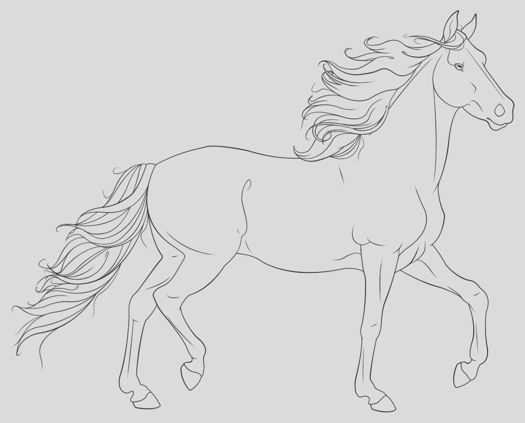 realistic horse coloring pages coloringpages horse coloring pages for adults printable horse coloring pages to print for free
