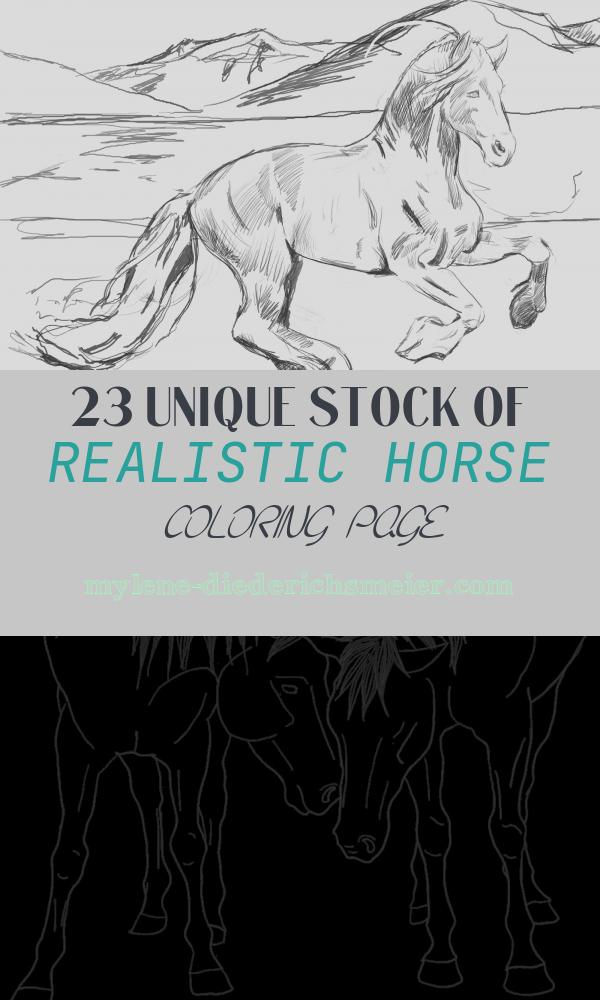 Realistic Horse Coloring Page New Realistic Horse Coloring Pages for Adults Coloring Pages