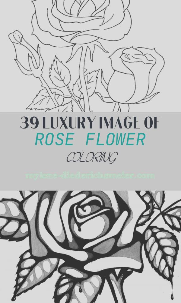 Rose Flower Coloring Beautiful Rose Coloring Pages Download and Print Rose Coloring Pages