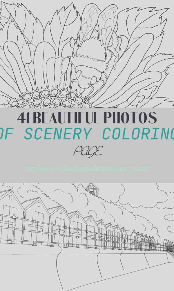 Scenery Coloring Page Awesome Beautiful Scenery Colouring Pages In the Playroom