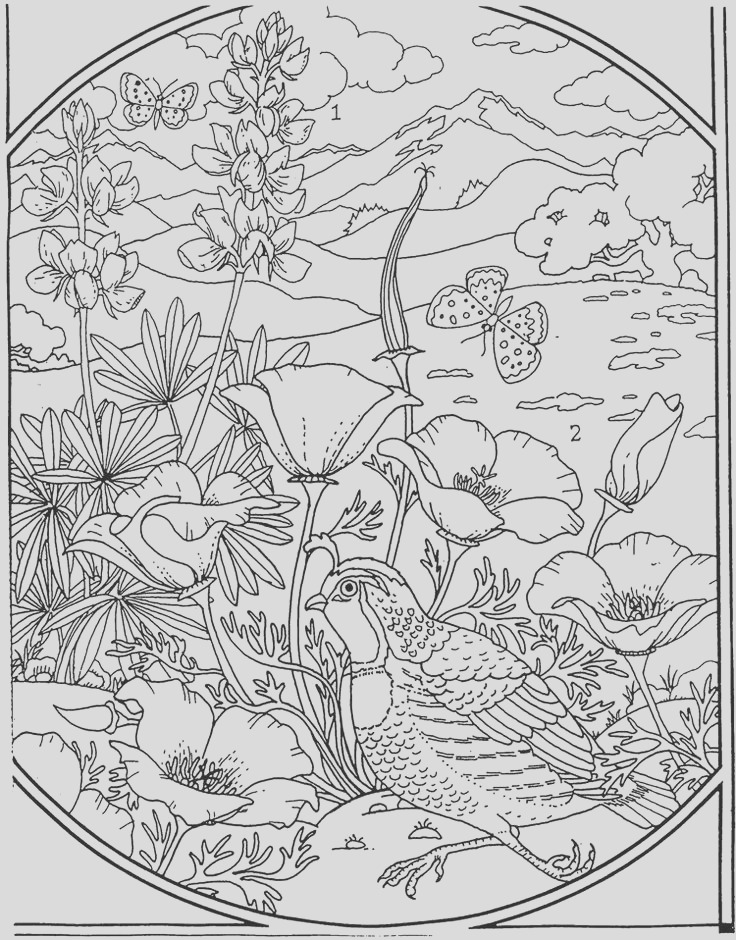 adult coloring pages landscapesscenery