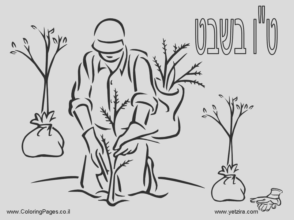 shabbos coloring pages