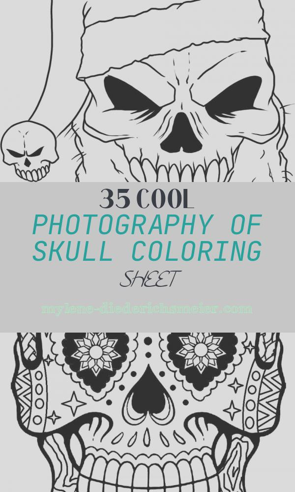 Skull Coloring Sheet Inspirational Free Printable Skull Coloring Pages for Kids