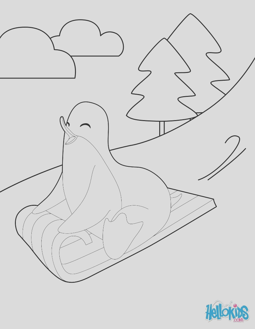 sledding penguin