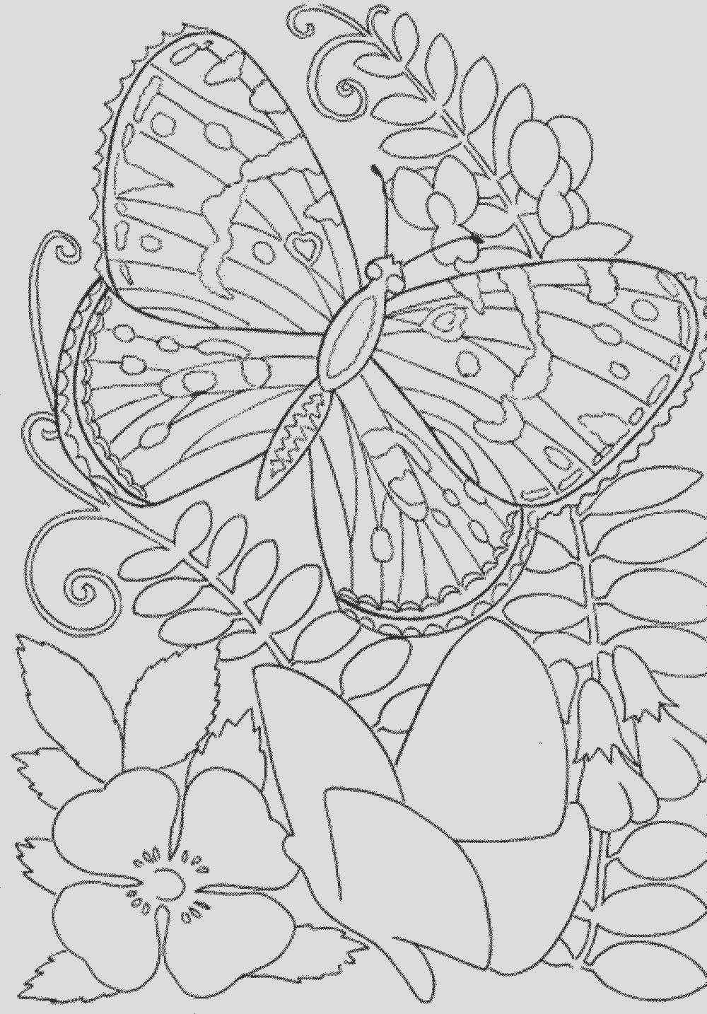 free spring pages for adults sketch templates