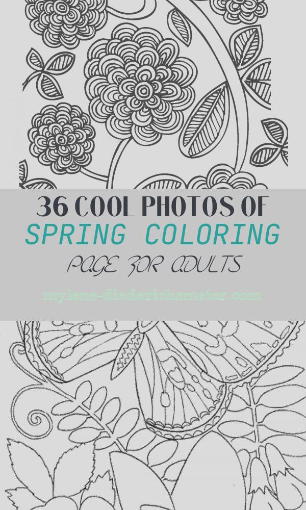 Spring Coloring Page for Adults Elegant Free Spring Coloring Pages for Adults the Country Chic