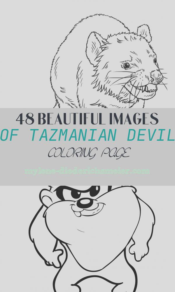 Tazmanian Devil Coloring Page Lovely Tasmanian Devil Coloring Page