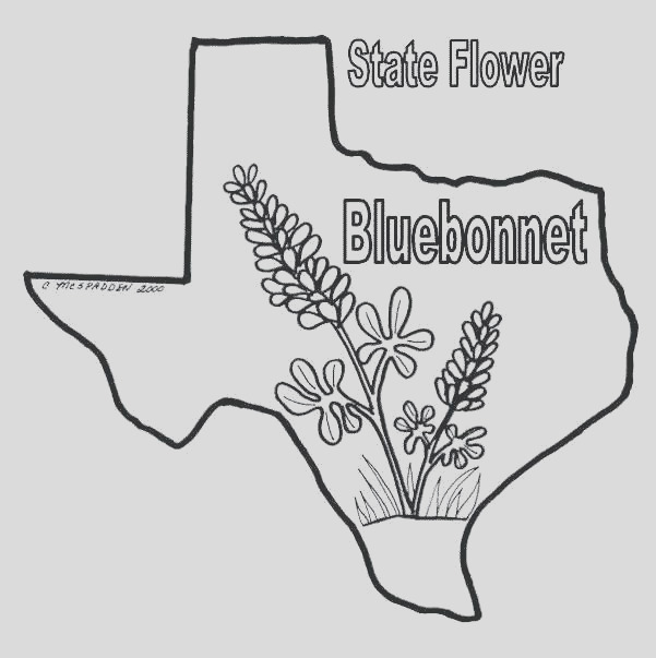 texas coloring pages to print