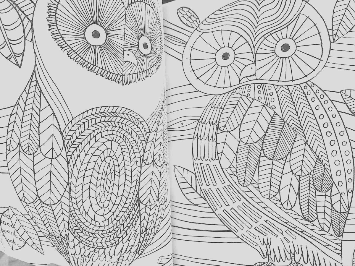 the mindfulness coloring book anti stress art