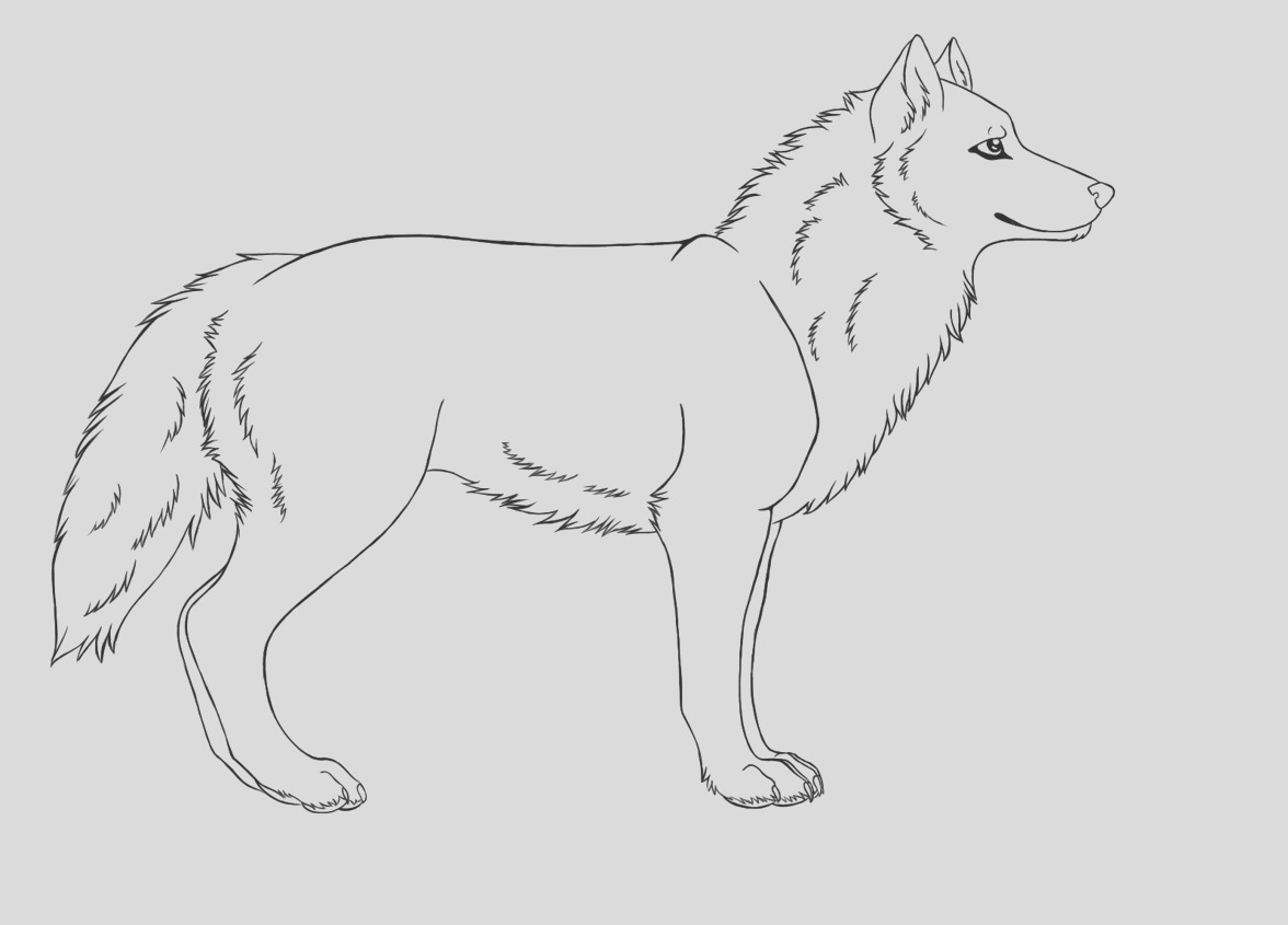 wolf coloring pages