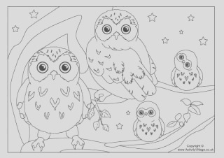 bird colouring pages
