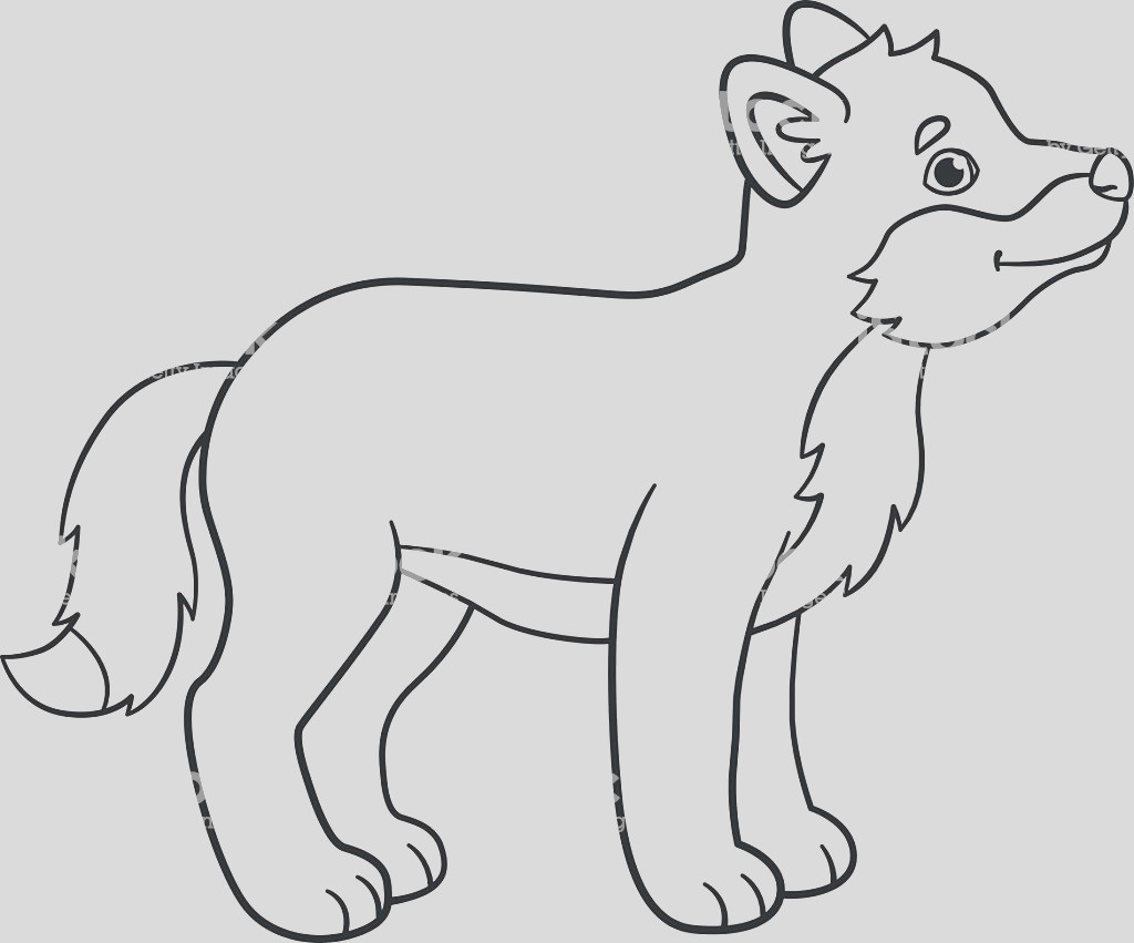coloring pages little cute baby wolf smiles gm