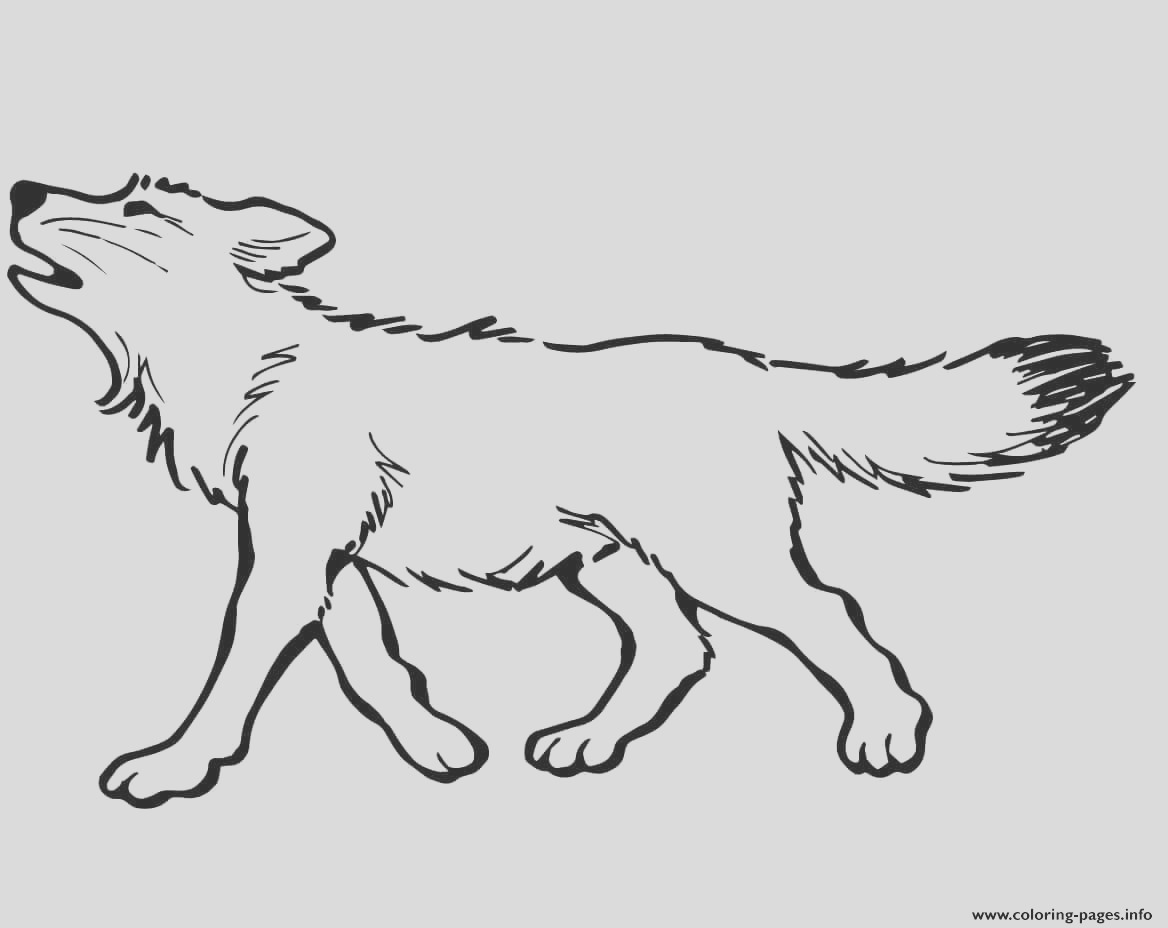 baby wolf printable coloring pages book