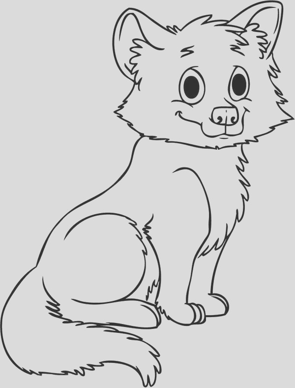 baby wolf drawing