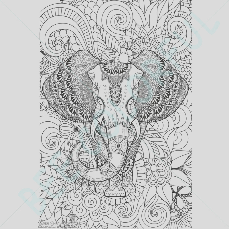 bee colorful original big coloring poster 24x 36 african elephant