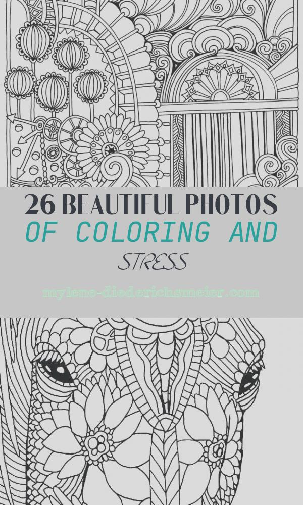 Coloring and Stress New Color Me Stress Free Nearly 100 Coloring Templates to