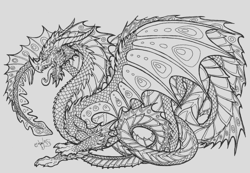 u2e6a9a9r5t4q8a9 realistic dragon coloring pages for adults adult colouring