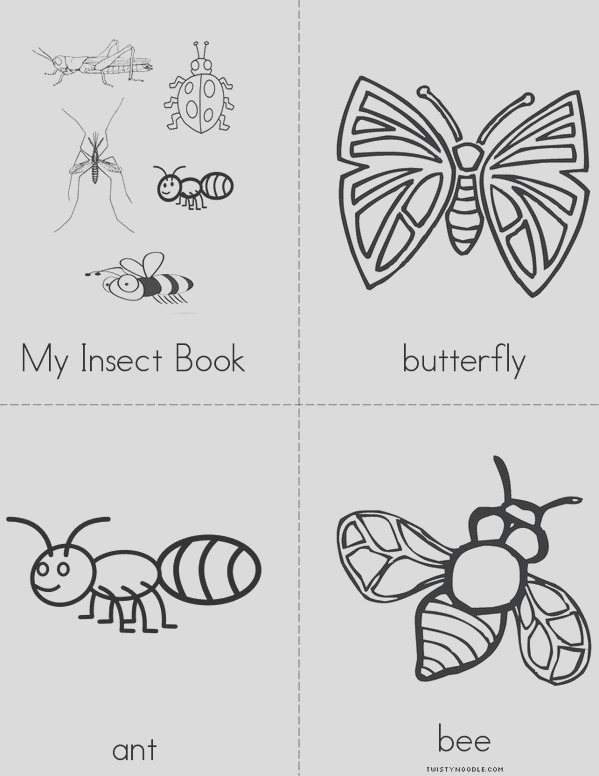 my insect book minibook