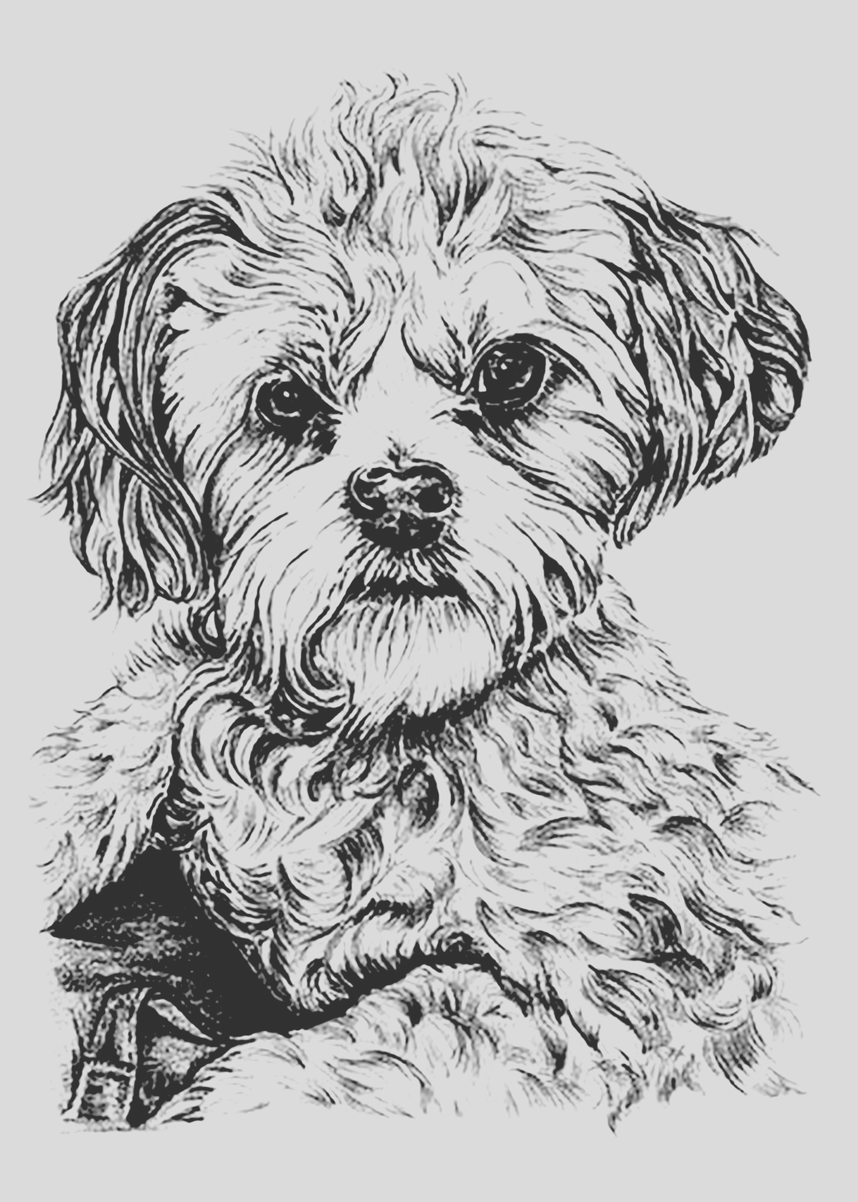 image=dogs coloring page dog 1