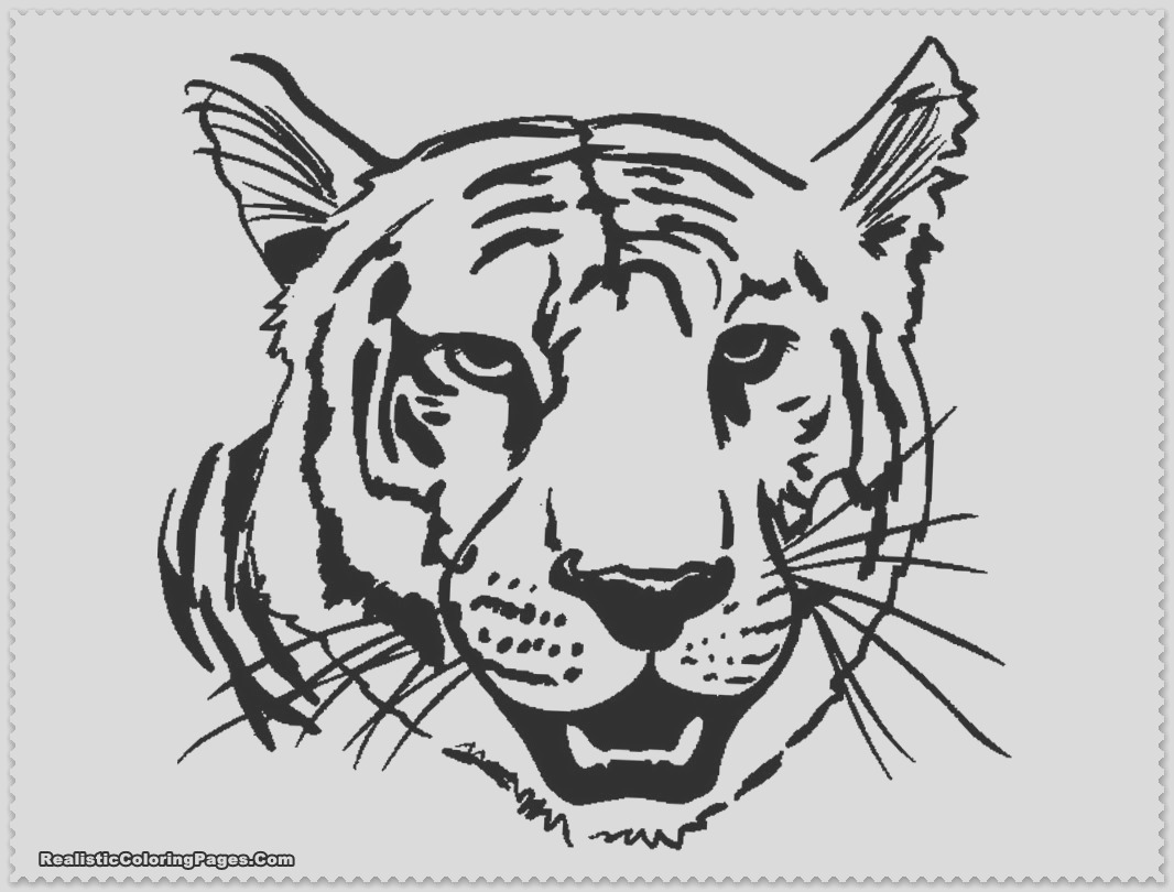 tiger coloring pages animal coloring pages 30 printable coloring pages