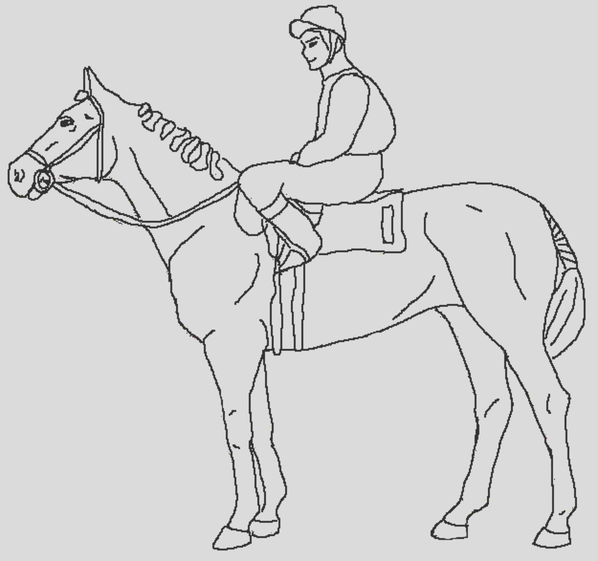 fun horse coloring pages kids