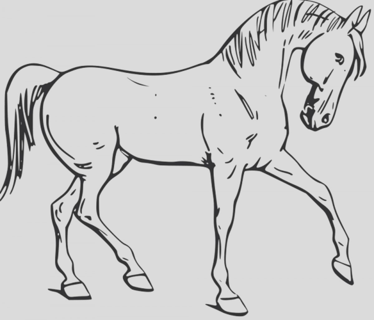 Free Coloring Page Horse Unique Fun Horse Coloring Pages for Your Kids Printable