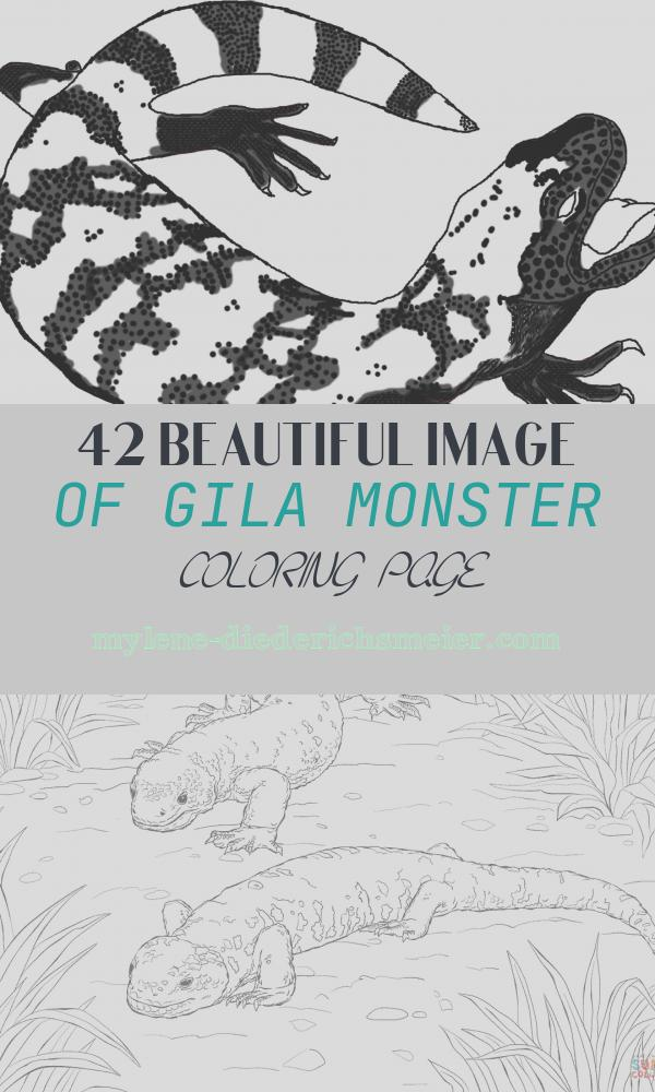 Gila Monster Coloring Page Awesome Monster Coloring Pages