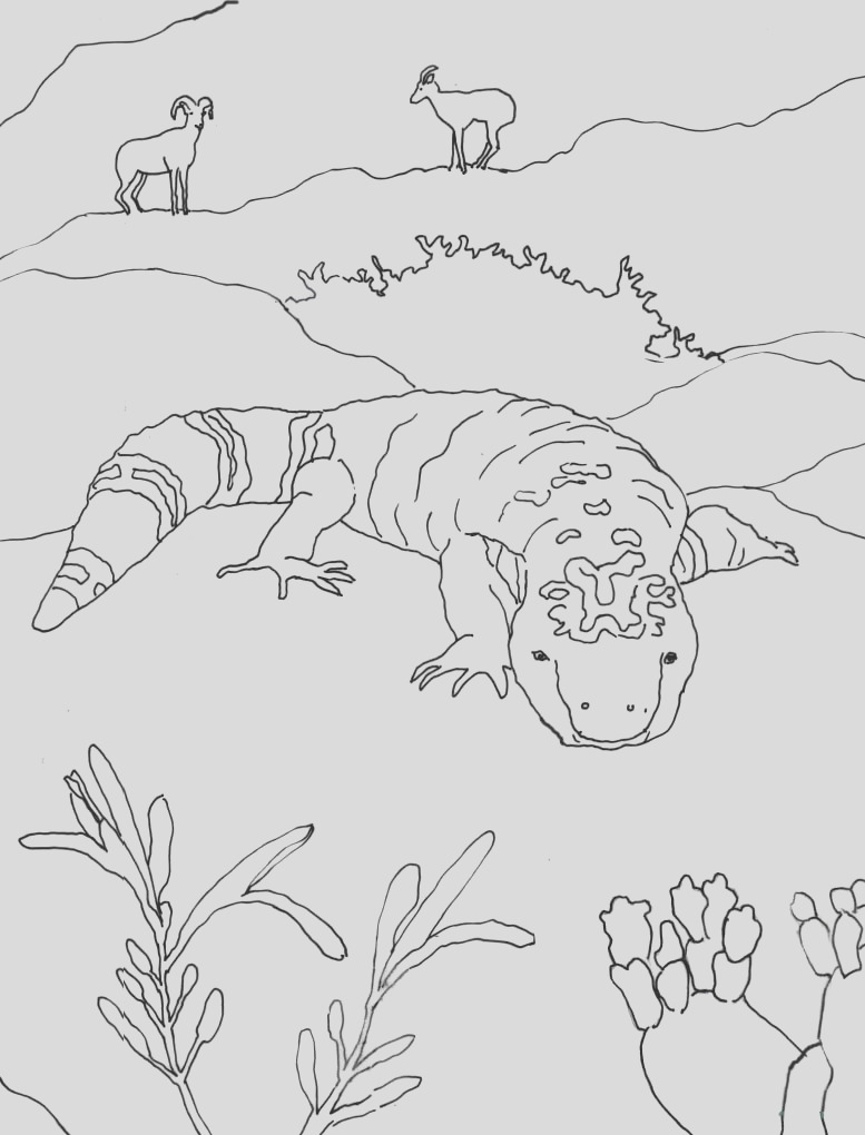 coloring page gila monster in sonoran