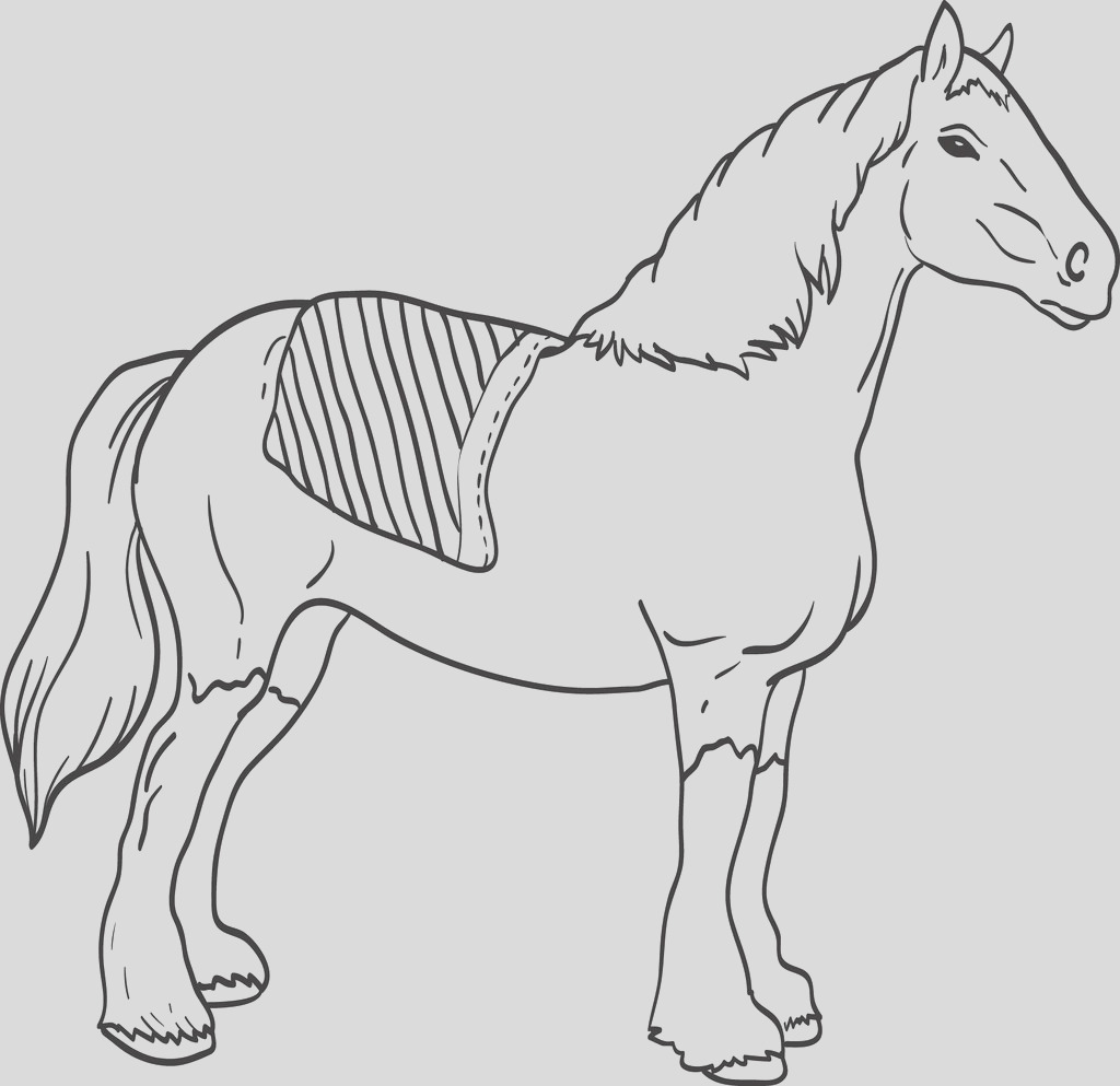 clydesdale horse coloring page a4253