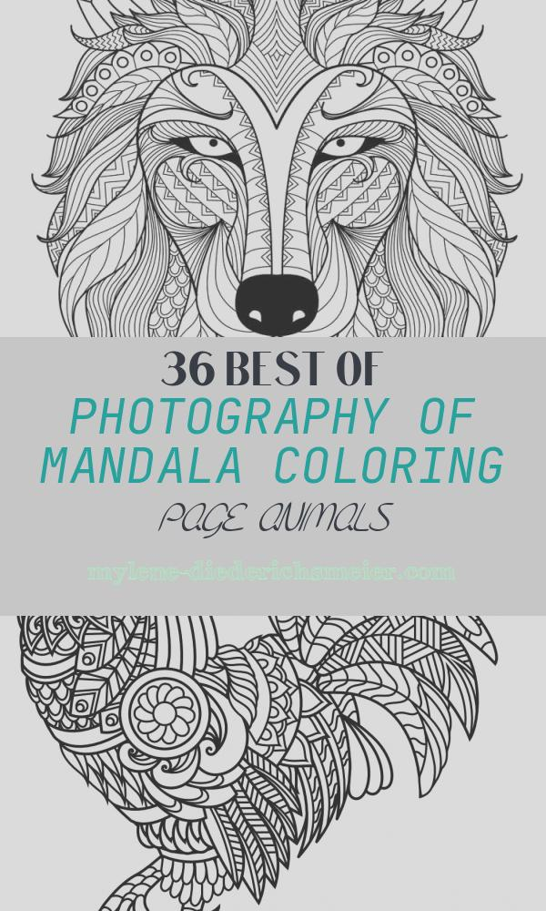 Mandala Coloring Page Animals Elegant Animal Mandala Coloring Pages for Adult Free Printable