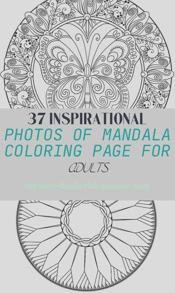 Mandala Coloring Page for Adults Best Of Animal Mandala Coloring Pages Best Coloring Pages for Kids