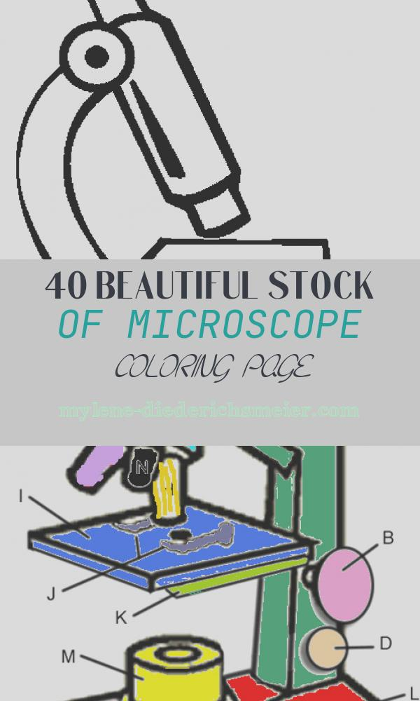 Microscope Coloring Page Awesome 92 Best School Supplies Coloring Pages for Kids Updated 2018