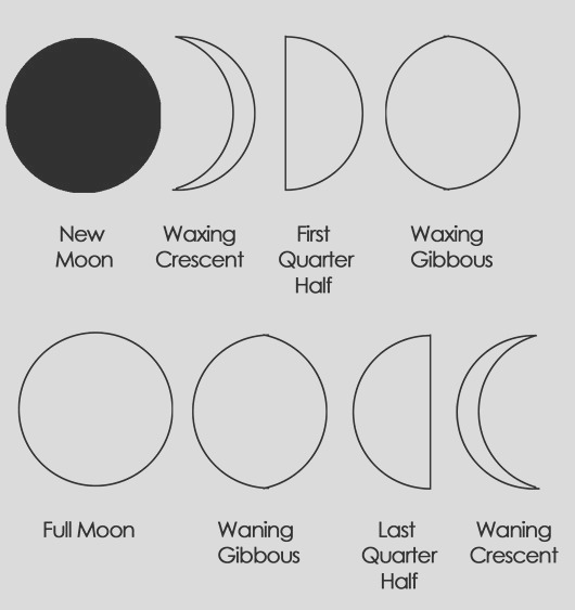 moon coloring pages for kids to learn colors and phases of moon