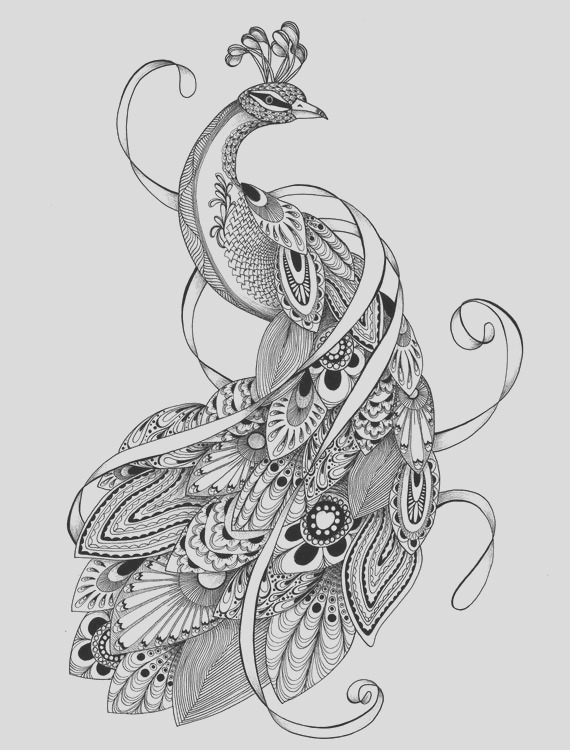 colouring pages adult coloring pages of