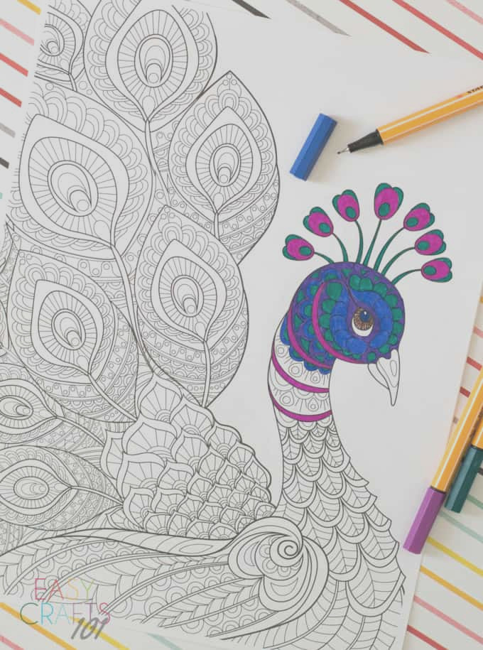 free adult coloring page peacock