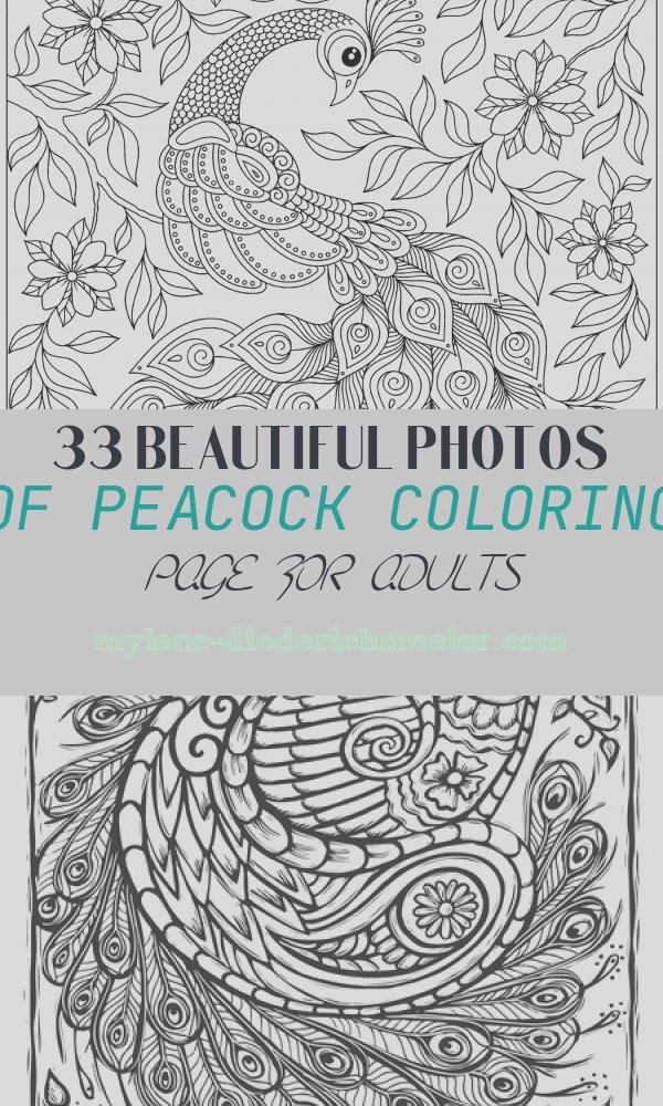 Peacock Coloring Page for Adults Lovely Peacock Among the Flowers Peacocks Adult Coloring Pages