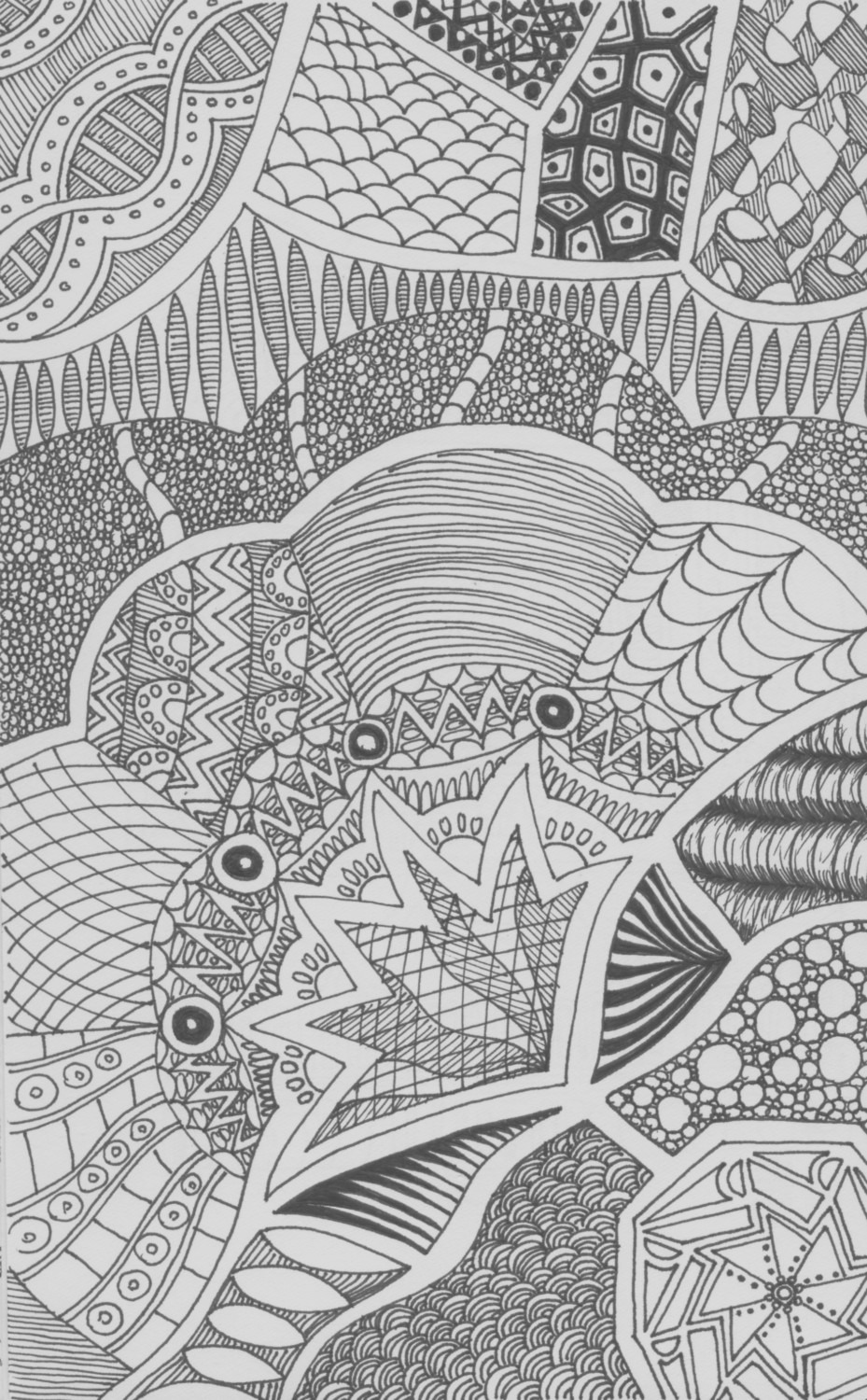 peacock fan adult coloring page