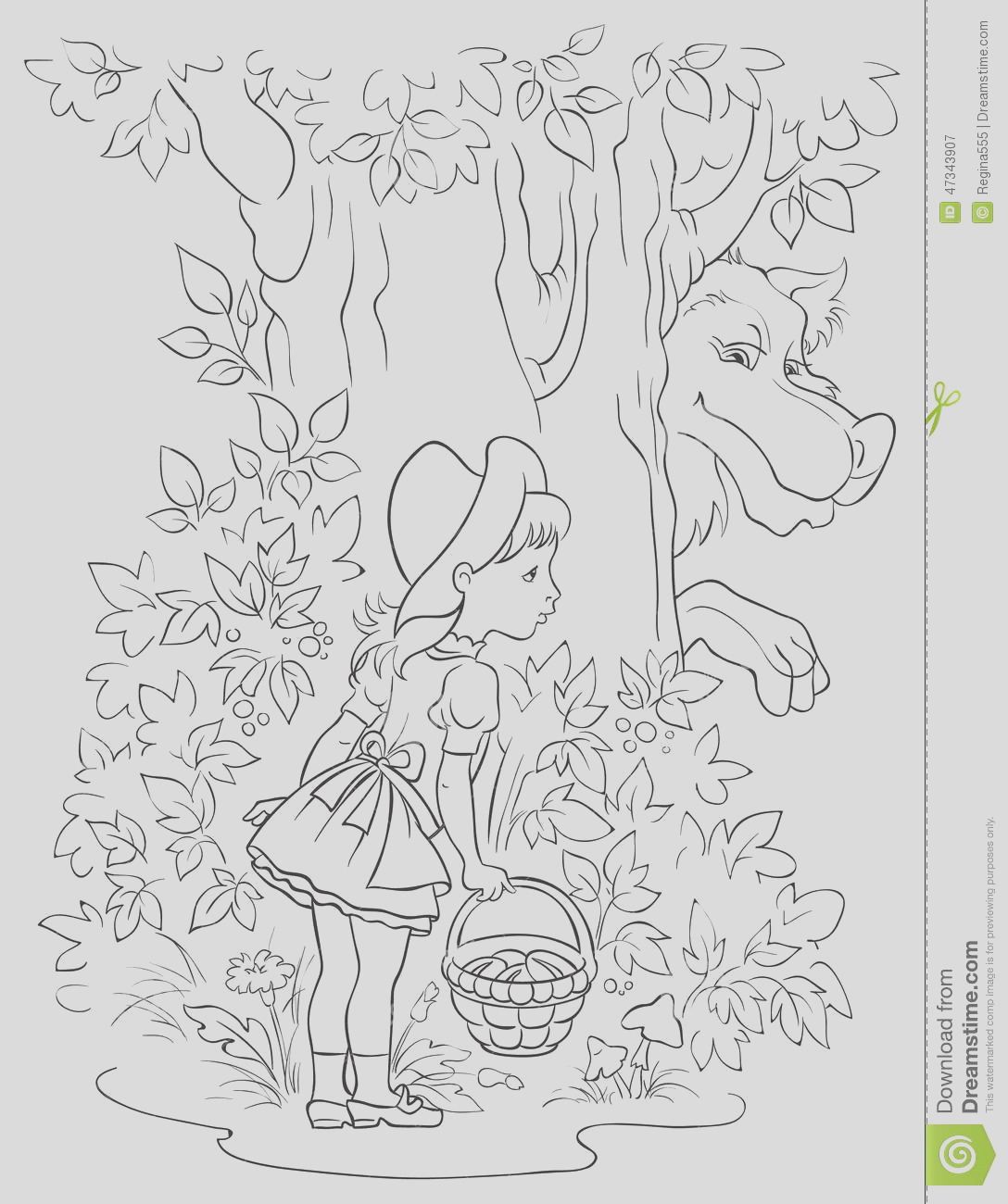 stock illustration little red riding hood wolf colouring page children fairy tale illustration outlined version image