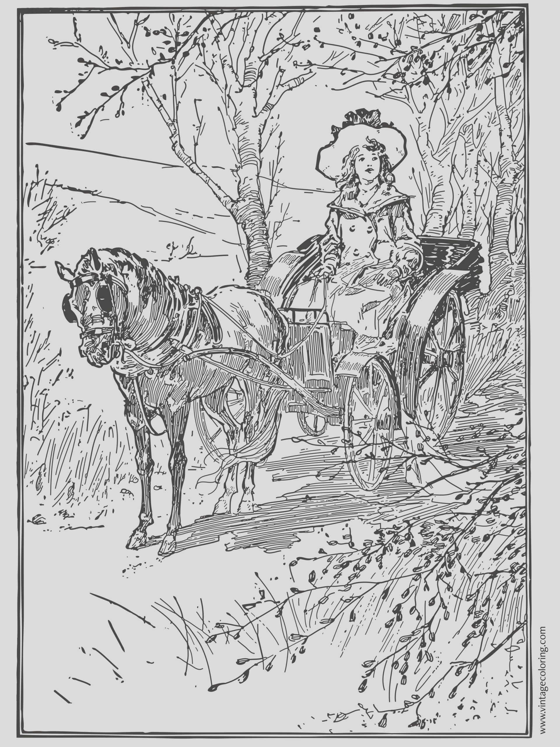 denise and ted noodles the horse a free vintage coloring page