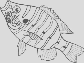 rosh hashanah coloring pages